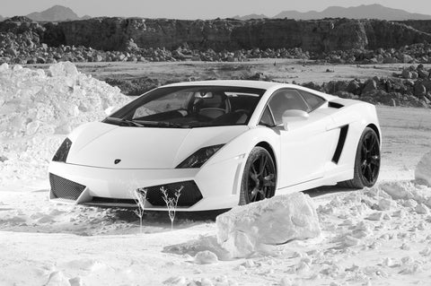 Wall Art, Lamborghini Gallardo | White, - PosterGully