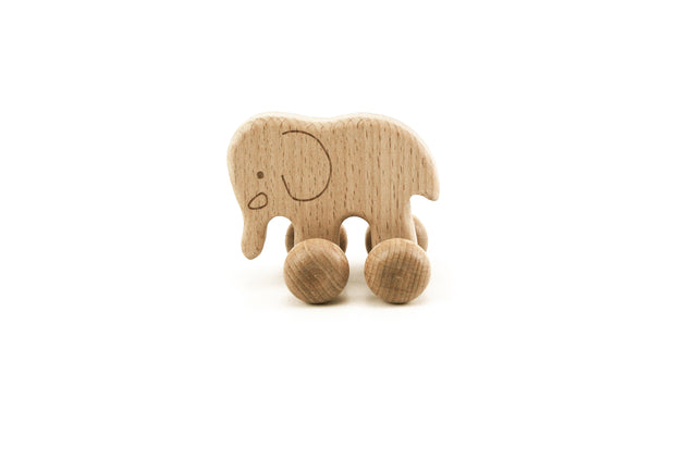 Wooden Push Along Toys - Set of 4