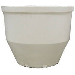 Liner For 13cm Planter (Case of 66)
