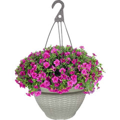 "12"" Sunrise Wicker Hanging Basket (Case of 50)"