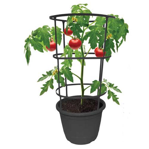 "12"" Vista Tomato Planter w/ Trellis (Case of 12)"