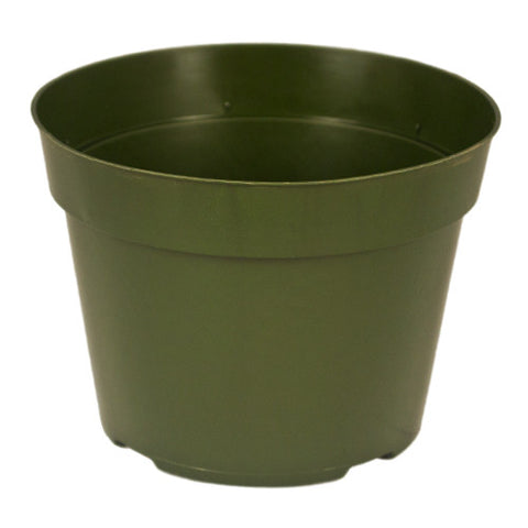 "6"" Thin Wall Azalea Pot (Case of 450)"