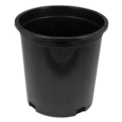 #1 Short Injection Molded Container (Case of 200)