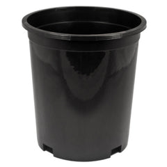 #1 Tall Injection Molded Container (Case of 144)
