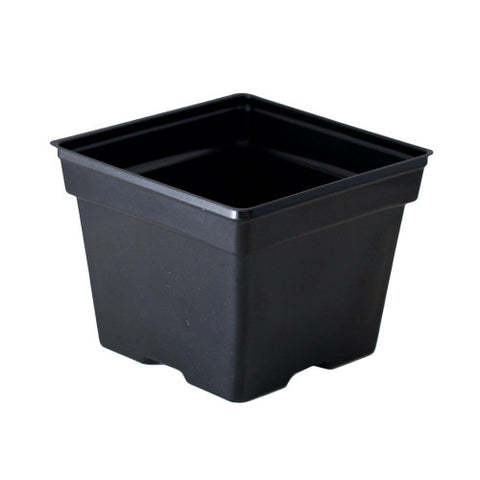 "4"" Squat Square Pot (Case of 1575)"