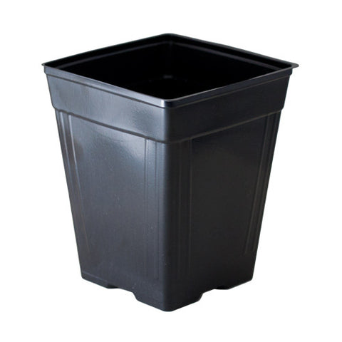 "rEarth 4"" Square Quart Pot (Case of 1350)"
