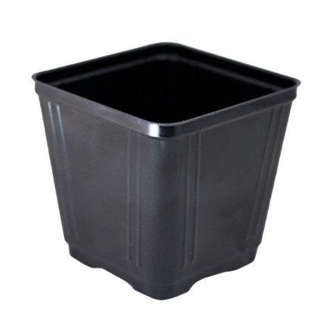 "rEarth 3.5"" Tech Square Pot-JMCTS35-1P (Case of 1375)"