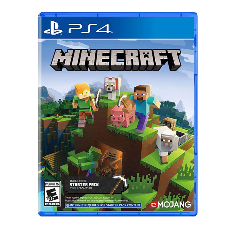 PS4 Minecraft Starter Pack
