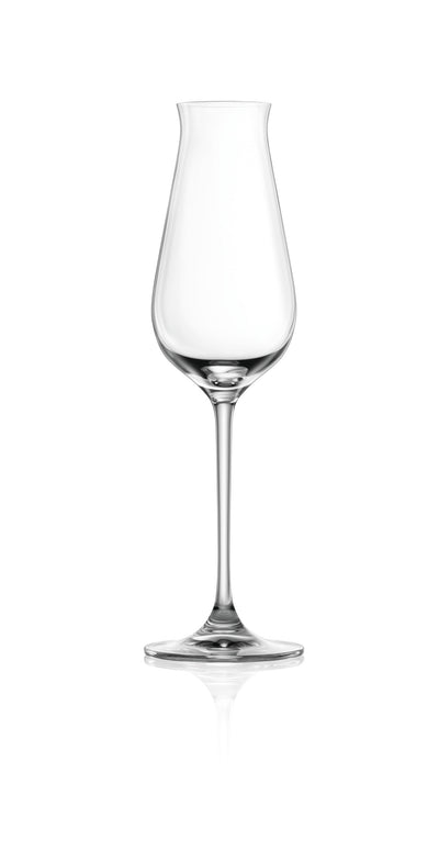 DESIRE SPARKLING WINE GLASS - 240ML (6 pieces)