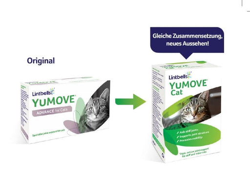 YuMOVE Cat | Marigin AG