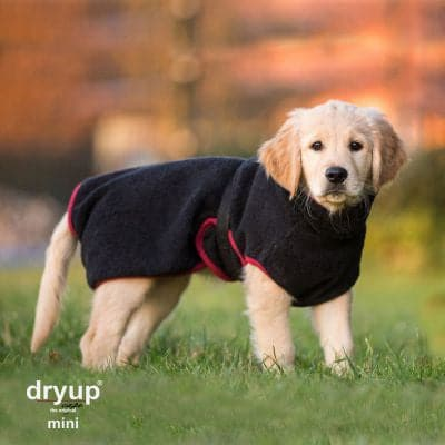 Dryup Cape Mini | Marigin AG