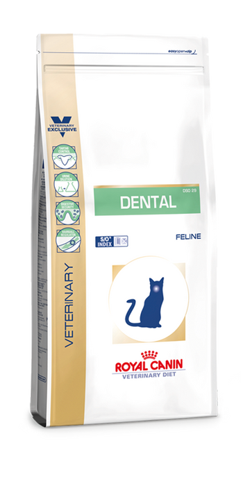 Dental Cat | Marigin AG