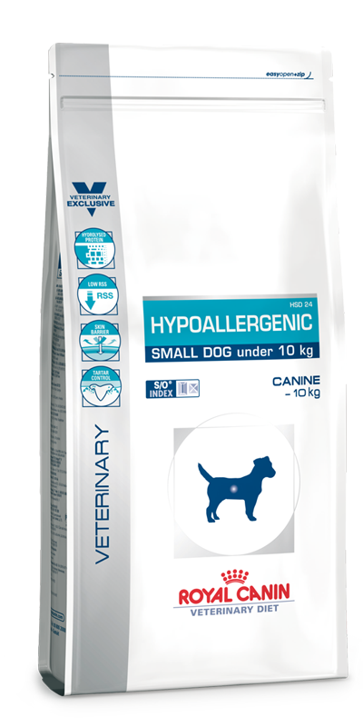Hypoallergenic small Dog | Marigin AG