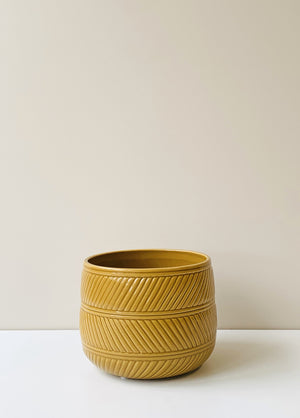 Eva Ceramic Planter - Ochre