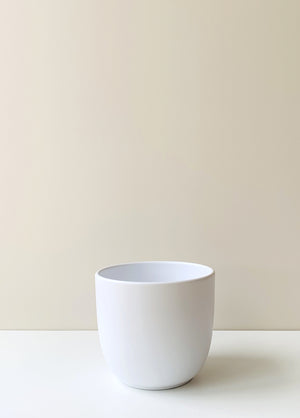 Tusca White Ceramic Planter