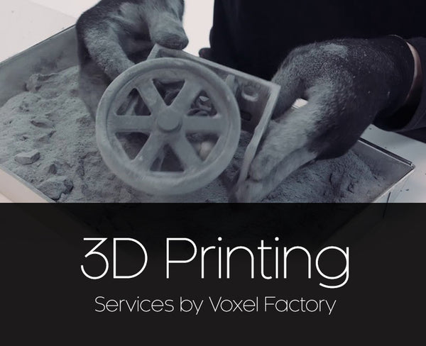 Voxel Factory SLS 3D printing service with Sinterit Lisa 3D printer thumbnail