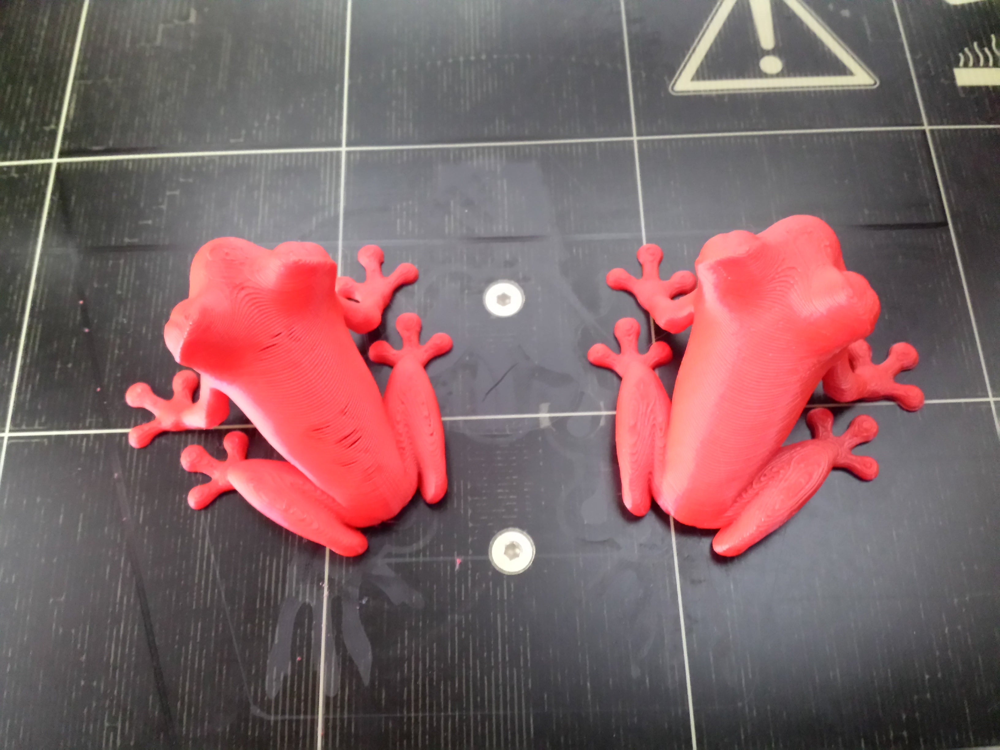Picture of Treefrog comparison between two prints with Prusa i3 MK2 3D printer
