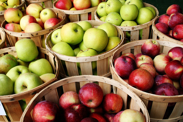Fun Fall Activities - Apple Picking