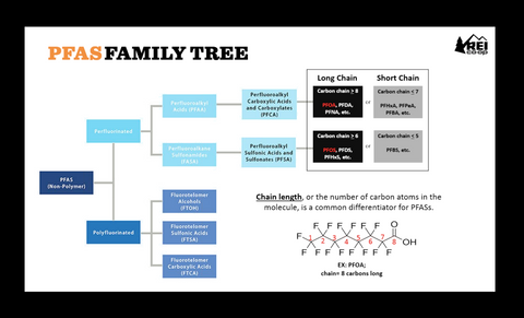 PFAS Family Tree