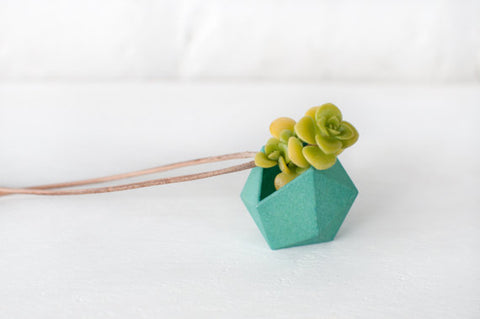 Geometric wearable planter