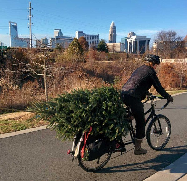 Christmas Shopping By bike - How to carry a christmas tree on your bike