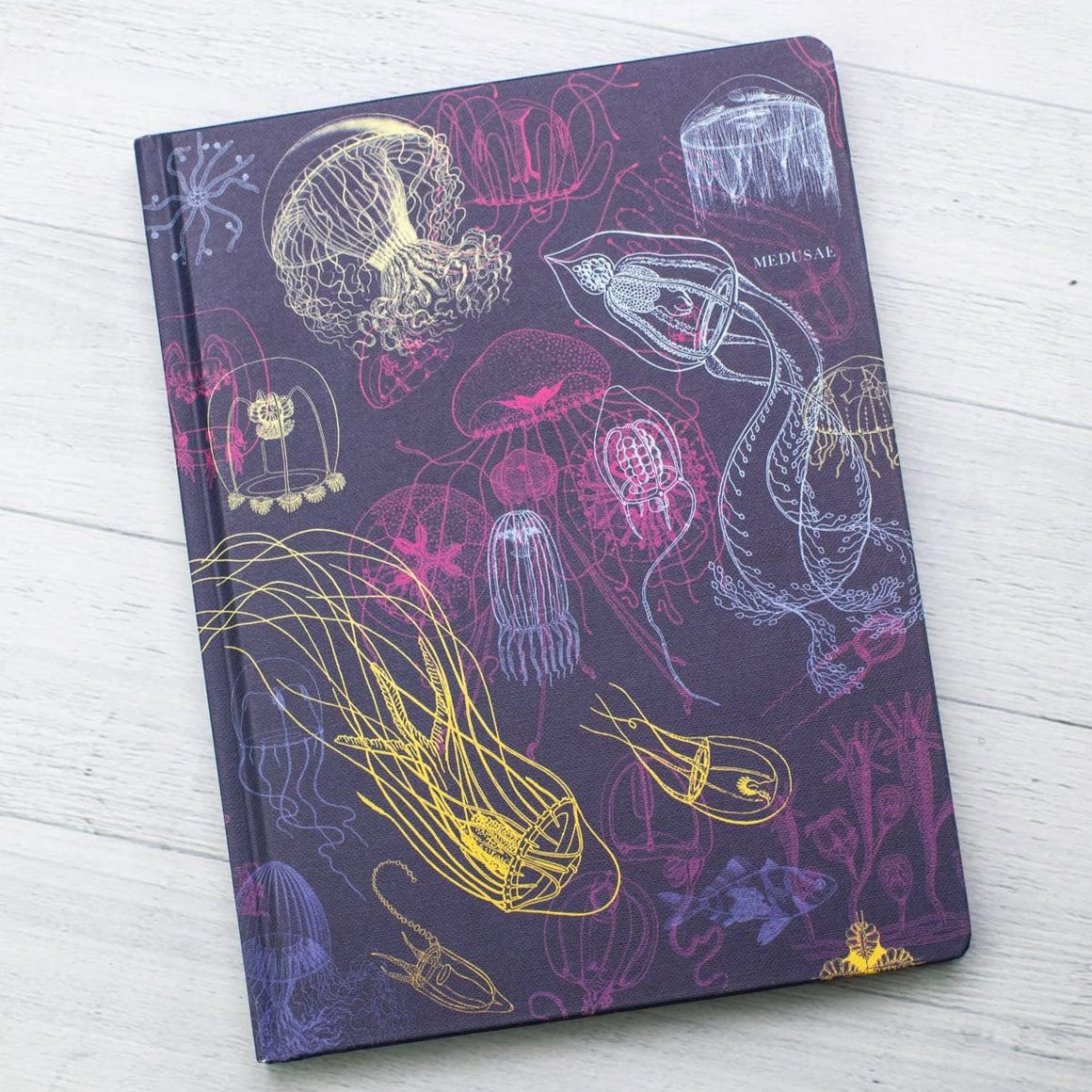Cognitive Surplus: Jellyfish Hardcover with Dot Grid