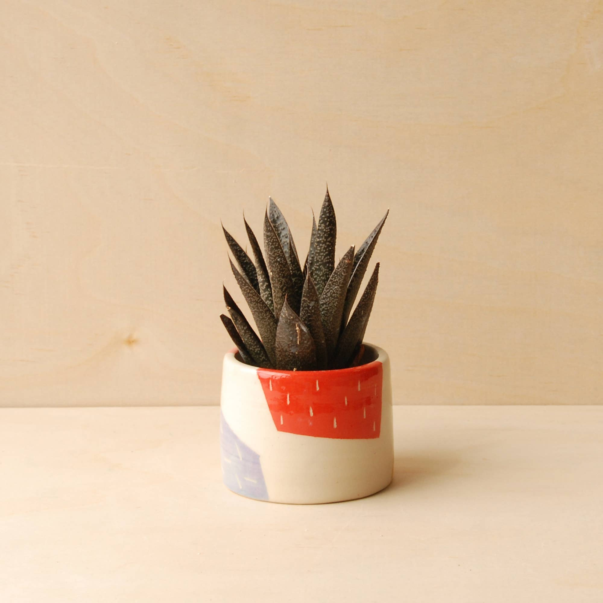 Nightshift Ceramics: Pieces Planter