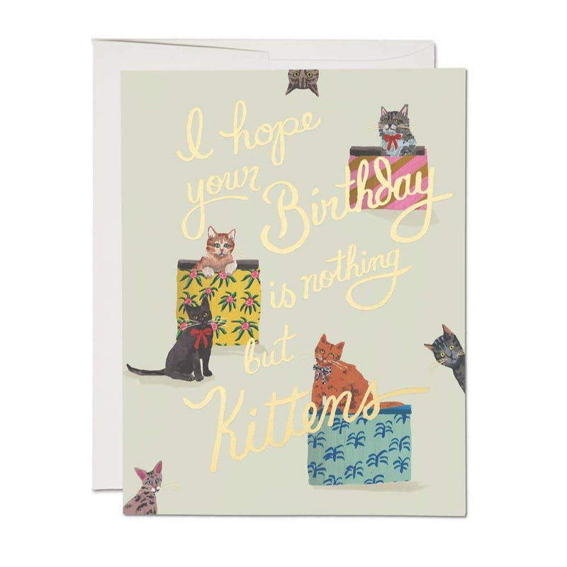 Red Cap Cards: Nothing But Kittens