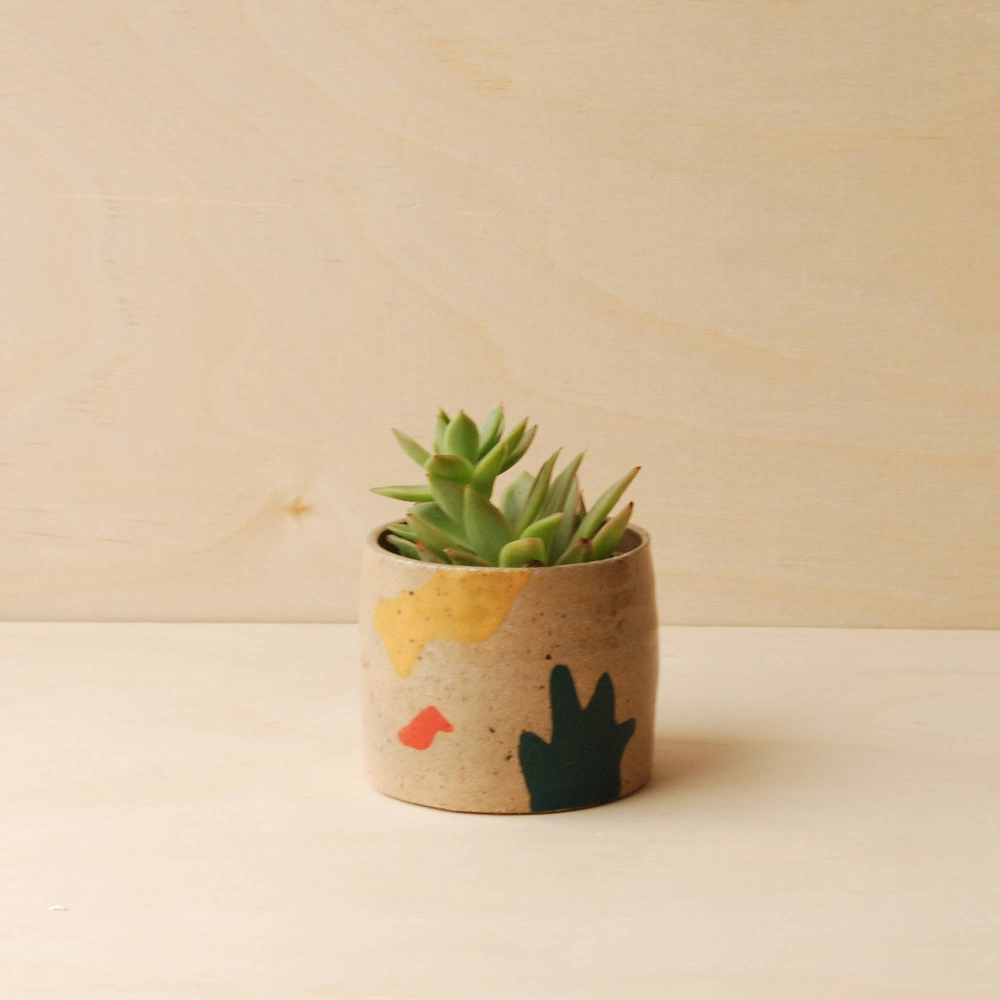 Nightshift Ceramics: Holiday Planter