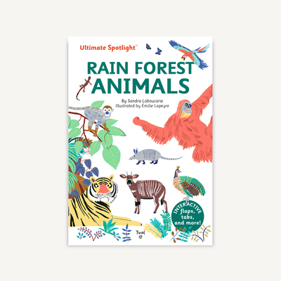 Ultimate Spotlight: Rain Forest Animals