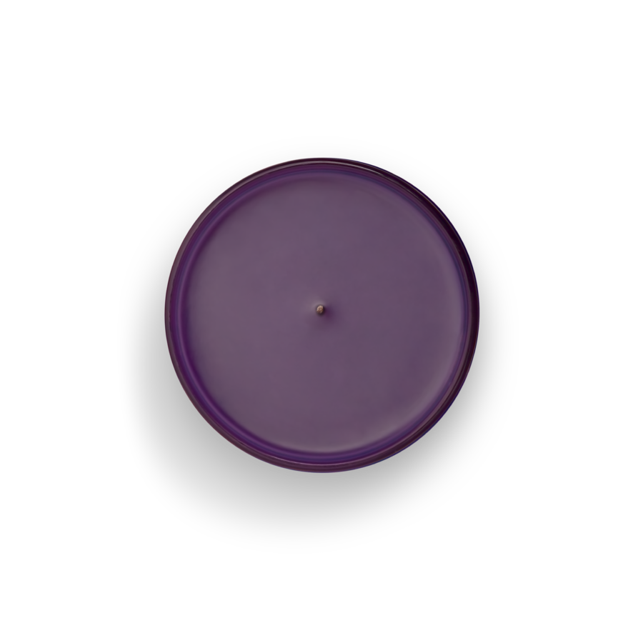 Boy Smells: Philia Candle