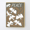 Hello Lucky: Flock of Doves Card, Set of 6