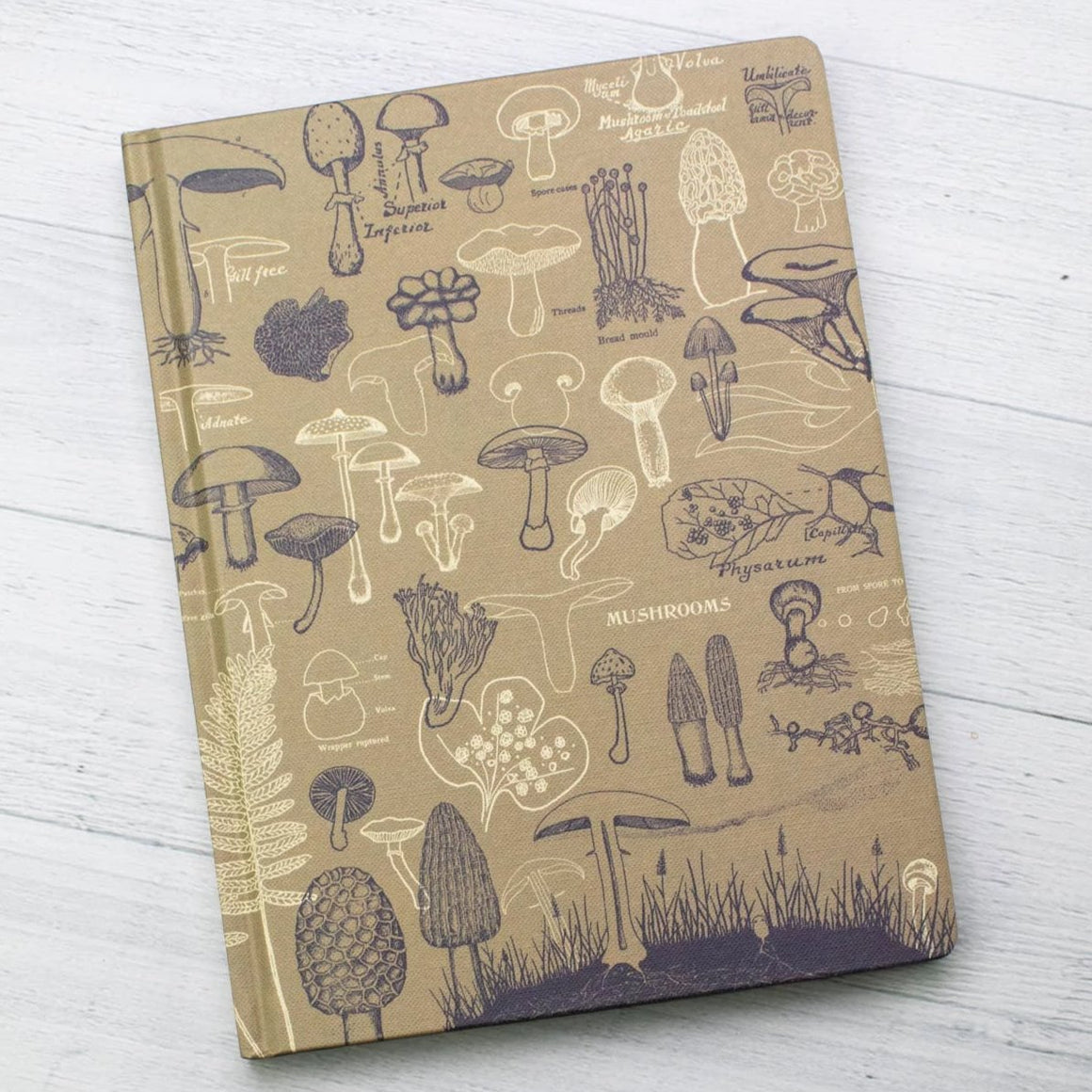 Cognitive Surplus: Mushrooms Hardcover with Dot Grid