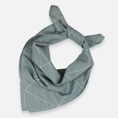 Anchal Project: Graph Bandana, Spruce