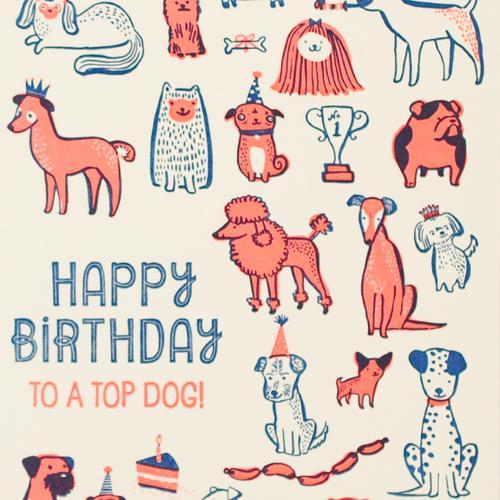 Hello Lucky: Top Dog Birthday Card