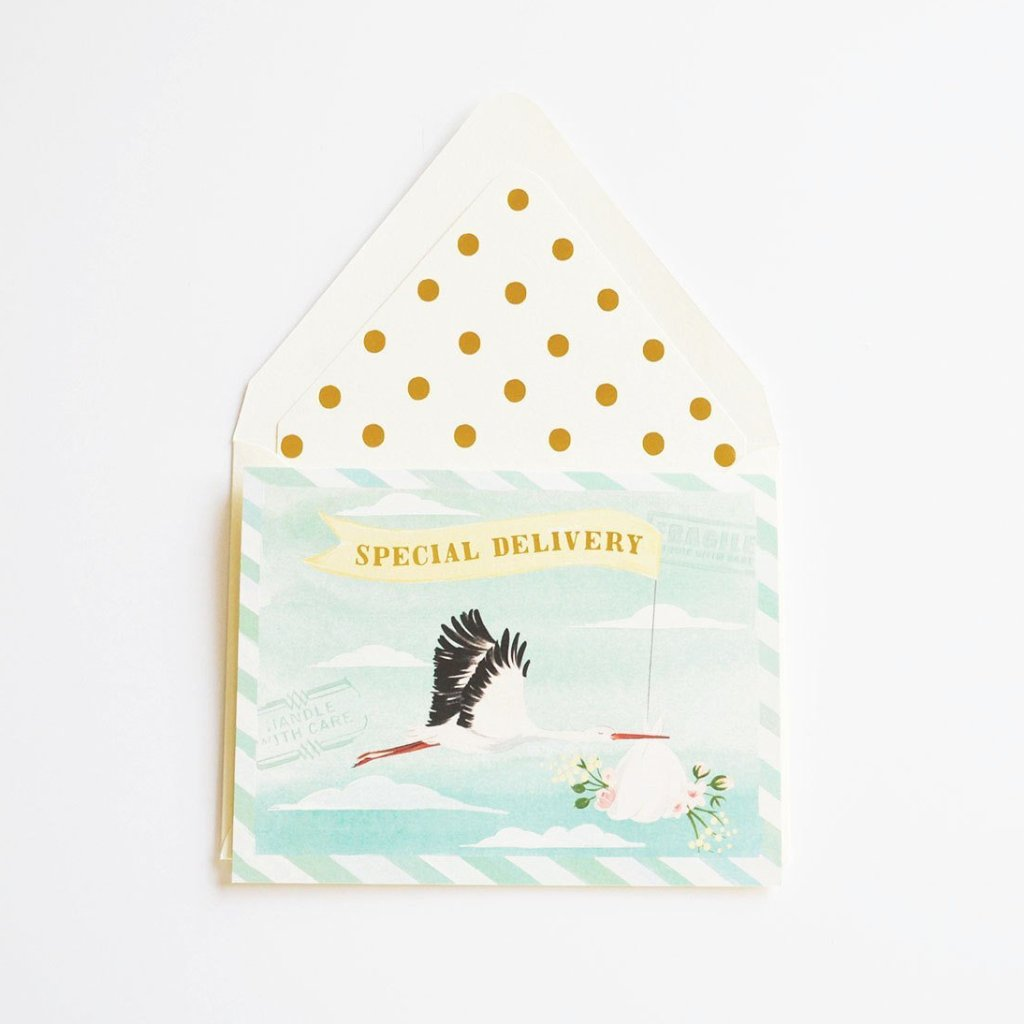 The First Snow: Special Delivery Baby Stork Card