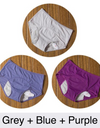 Period proof panties pack