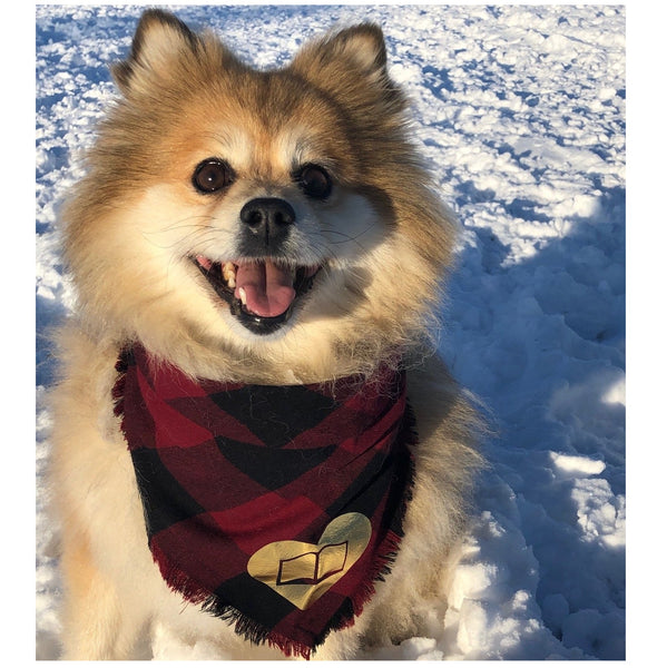 BARK YYC - Library Pet Bandanas