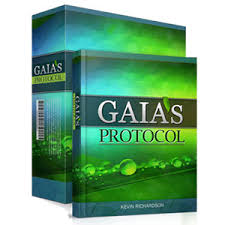 Gaia's Protocol - Offer Today