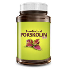 Pure Natural Forskolin - Limited Stock