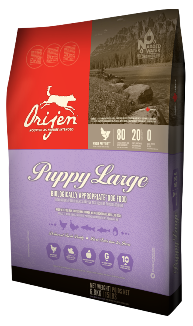 Orijen Premium Large Breed Puppy Food | Grain-Free Formula