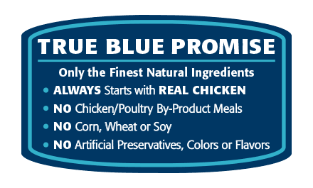 Blue Buffalo Wilderness Adult Dog Food | Grain-Free Formula | Chicken Recipe