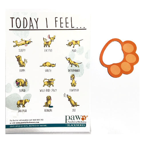 How I Feel Magnet - Promotional Products