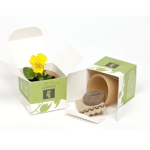 Seed Pot Box - Promotional Products