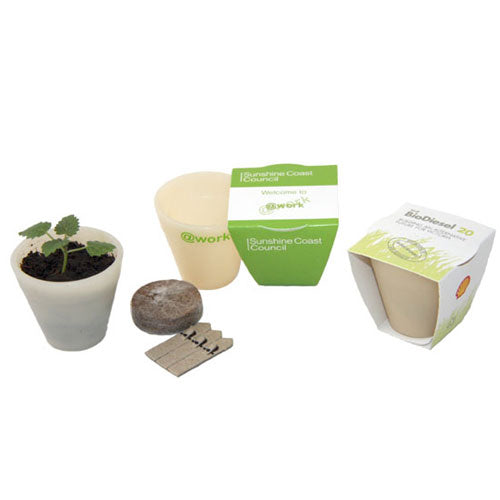 Seed Pot with Wrap - Promotional Products