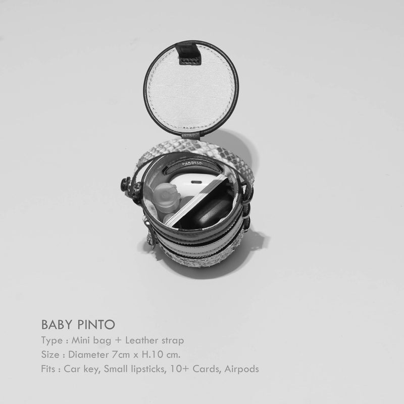 BABY PINTO | SQUID INK