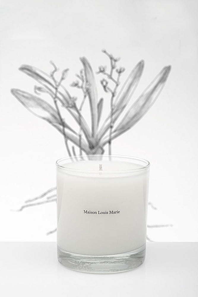 Candle | No. 02 Le Long Fond - Leo Boutique