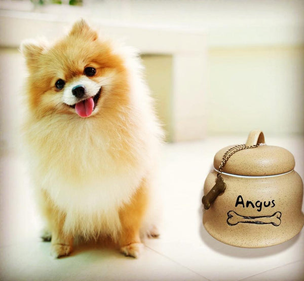Personalised sand stone Pet Dog storage jar - SnugDem Boogums