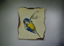 Blue Tit Bird - Original Artwork