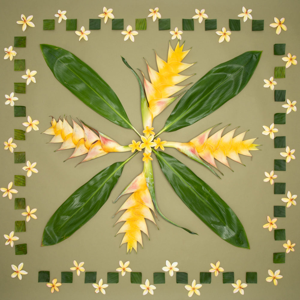 plumeria photograph with ti leaves heliconia and cut up ti leaf check pattern